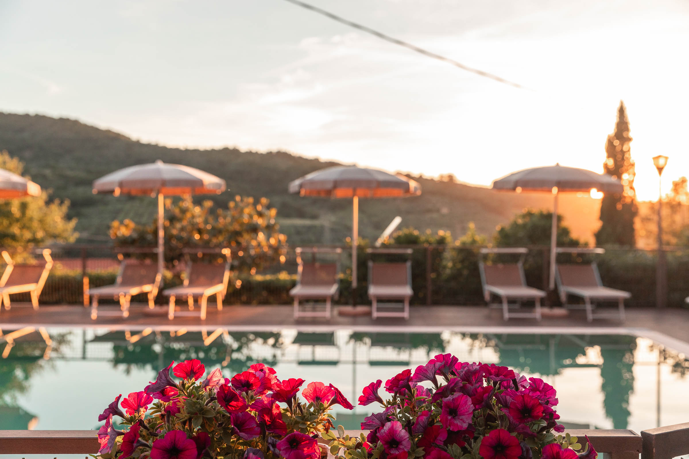 fiori piscina